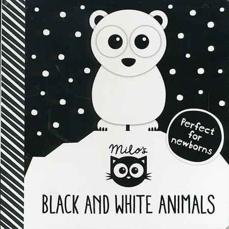 Black and White Animals